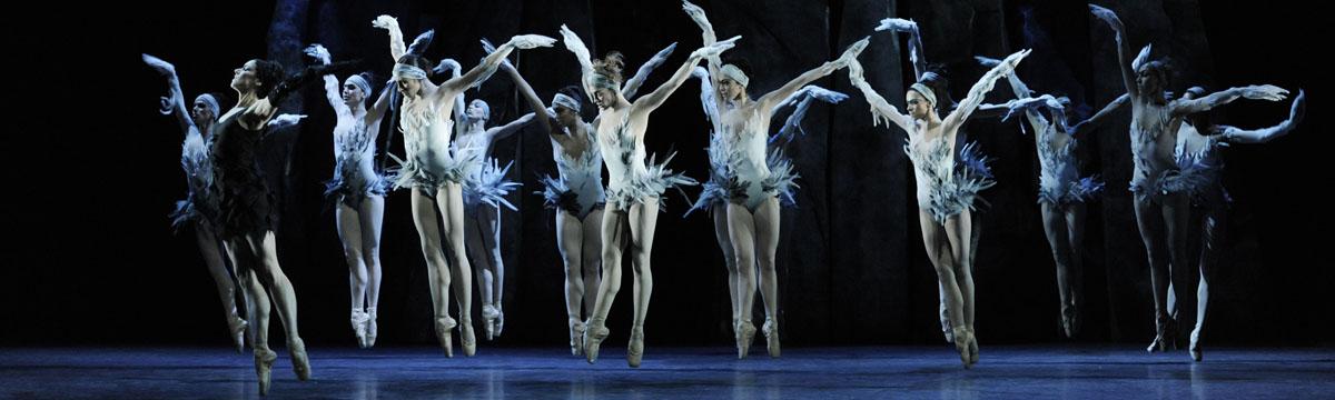 les ballets de monte carlo revisits swan lake
